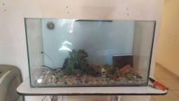 Vendo aquário de peixe