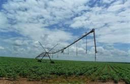 Fazenda de grãos e pecuária com 618 has em Barreiras