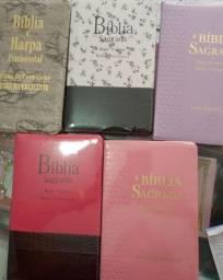 Bíblia sagrada com harpa cristã e índice