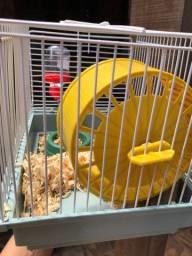 Hamster + gaiola