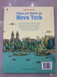 Livro Fique por dentro de Nova York