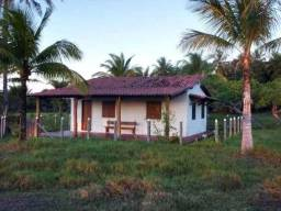 Fazenda 189 has na Ilha de Itaparica