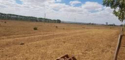 Fazenda 70 alqueires | 30 km Jatai | região da soja | Ac. permutas entrada