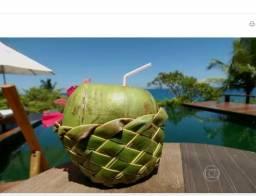 Coco vende a preço de revenda 0,90c