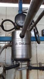 Venda de gado leiteiro e equipamentos Fazenda São Bento, Dorândia - Barra do Piraí