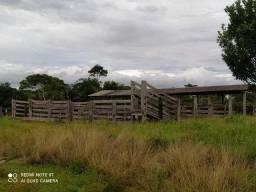 Vendo fazenda 70 hectares