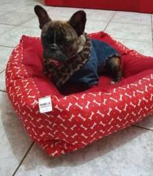 Vendo fêmea de bulldog Francês com Pedigree e microchip