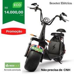 Moto Elétrica scooter-Patinete (Modelo Harley)