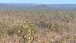 Vendo Fazenda na Região do Matopiba no Tocantins Não perca essa oportunidade.