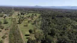 Fazenda 330 ha, região e poconé