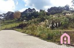 Terreno à venda em São caetano, Caxias do sul cod:2433