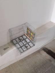 Gaiola para aves, feita de metal