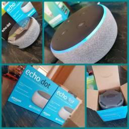 Alexa - Echo Dot