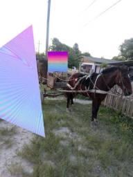 Cavalo de carroça