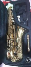 Sax alto Accord aas951