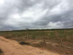 Terreno para chácara 4 hectares