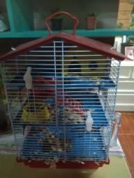 Vendo gaiola com casal de hamster
