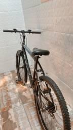 Bicicleta Summer status