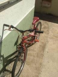 Bicicleta dn2