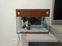 Aquario 15 litros