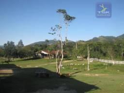 Adrianópolis PR Fazenda 400 alq. FA0005