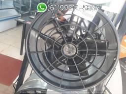 Exaustor Industrial 30 cm Ventisol Axial comprar usado  Brasília