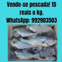 Vende-se pescada