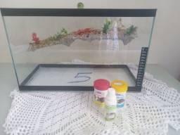 Aquaterreo para tartaruga