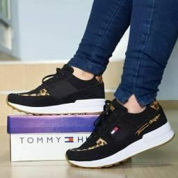 Tommy 3 cores disponíveis 34 ao 39