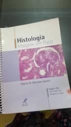 Histologia: Imagens em foco