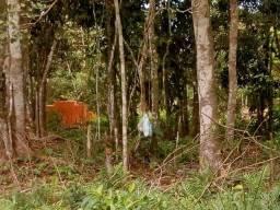 Lindo Terreno em Itanhaém