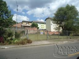Terreno para alugar em Vila nova, Novo hamburgo cod:11693