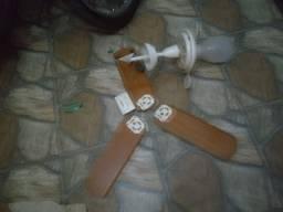 Ventilador de teto 110/220V