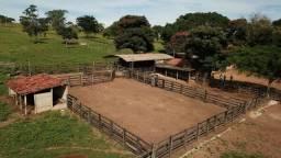 Fazenda 37,3 Alqueires ( 180,85 ha )- Nova Fátima-GO\Hidrolândia-GO