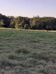 Fazenda 69 alqueires - Região Aparecida do Taboado-MS-F201021