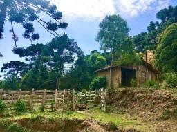 Terreno Rural para exploração turística no Alto da Serra da Mantiqueira no Sul de MG