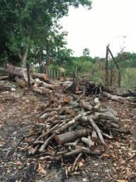 Doação de madeira