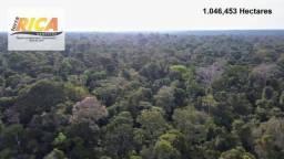 Fazenda no Municipio de Manicoré com 1.046,453 Hectares - FA0085