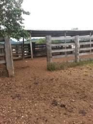 Fazenda na Agrovila das Palmeiras 866,51 Hectares
