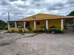 Chácara Localizada No Carneiro 6000 m2