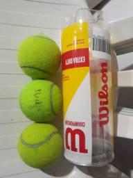 Bola de tenis Wilson Champion usadas