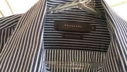 Camisa masculina Crawford