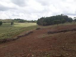 Vendo Sítio de 15 Alqueires em Ibiraci
