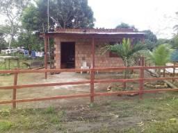 Troca se uma casa novo Airão