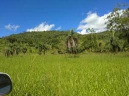 Fazenda há 20 km de itapuranga, pego GADO como pagto