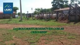 Fazenda Coração de Jesus com 1.000 hectares