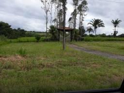 Vendemos uma fazenda com 325 hectares em Mãe do Rio