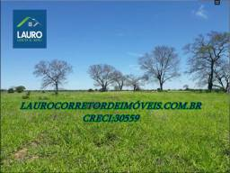 Fazenda Norte de Minas com 958 hectares em Jaíba-MG
