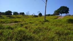Fazenda em Araguaína-TO, 35 alq, próx Araguaia