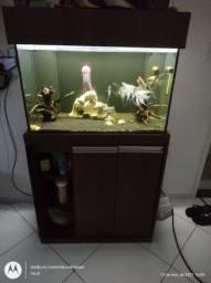 V/T aquário+sump+bomba de recalque leia anúncio